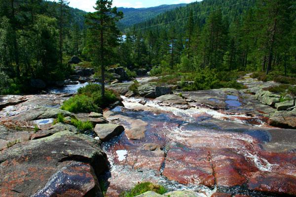Bortelid-Camping-sommer-ved-fossen