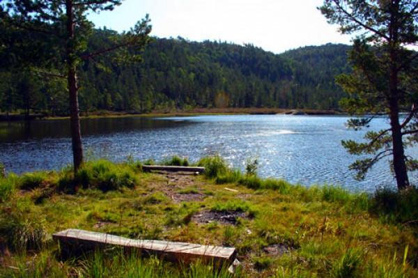 Bortelid-Camping-sommer-ved-murtetjønn